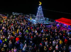 An image of Filey Fishtive Christmas Tree - Ceri Oakes