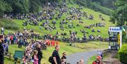 An image of Oliver's Mount racing spectators