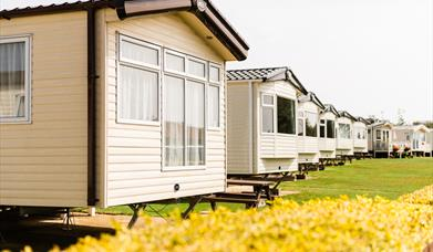 Flower of May Holiday Park - Caravans