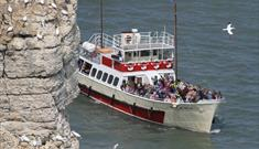 An image of RSPB Seabird Cruises
